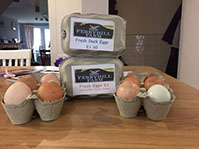 Eggs and egg boxes from Ferry Hill Farm